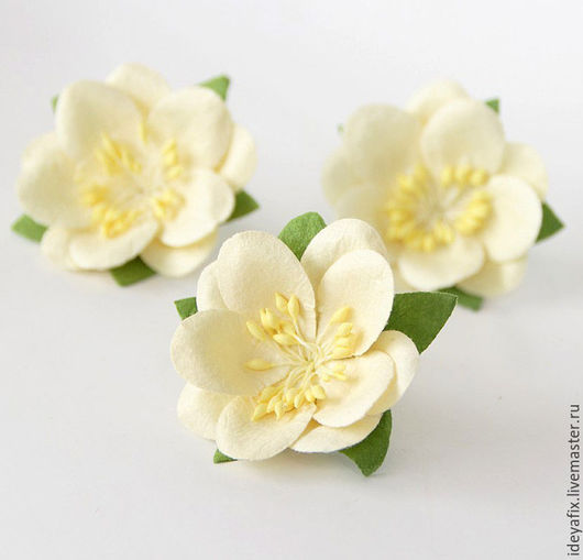 Диаметр цветочка 5 см.  Высота 1,5 см.  Цена указана за 1 цветок.