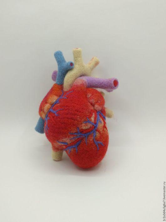 Приколы ручной работы. Ярмарка Мастеров - ручная работа. Купить Мягкое сердце ( не разбивается))). Handmade. Сердце, анатомическое сердце
