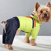 Для домашних животных, ручной работы. Ярмарка Мастеров - ручная работа Одежда для собак комбинезон Модник. Handmade.