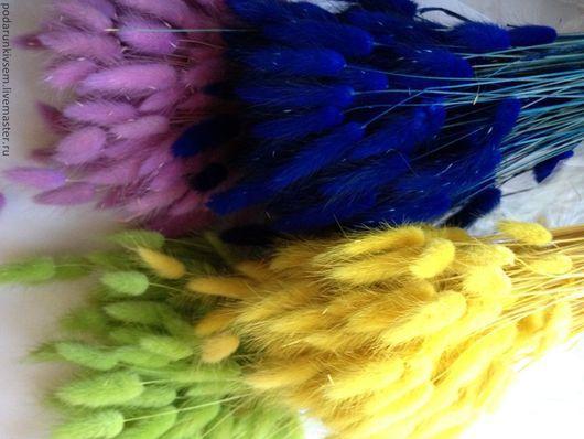 Материалы для флористики ручной работы. Ярмарка Мастеров - ручная работа. Купить Лагурус. Handmade. Лагурус, сухоцветы, для букетов, топиарий, разноцветный