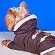 """Одежда для собак, ручной работы. Ярмарка Мастеров - ручная работа. Купить Курточка """"Шоколадный Мишка"""". Handmade. Куртка, флис, чихуахуа"""
