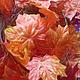 Материалы для флористики ручной работы. Ярмарка Мастеров - ручная работа. Купить Кленовые листья- лиана. Handmade. Рыжий, кленовые листья