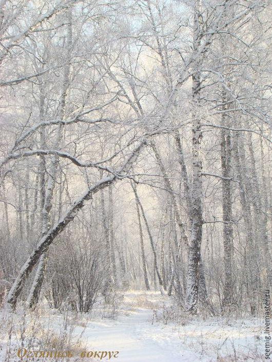 Фотокартины ручной работы. Ярмарка Мастеров - ручная работа. Купить Лесными тропами..... Handmade. Белый, березовый лес, пейзаж, тропинка