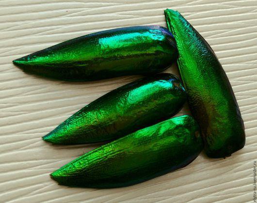 Для украшений ручной работы. Ярмарка Мастеров - ручная работа. Купить 50шт Желтовато-зеленые крылья златки Sternocera. Handmade.