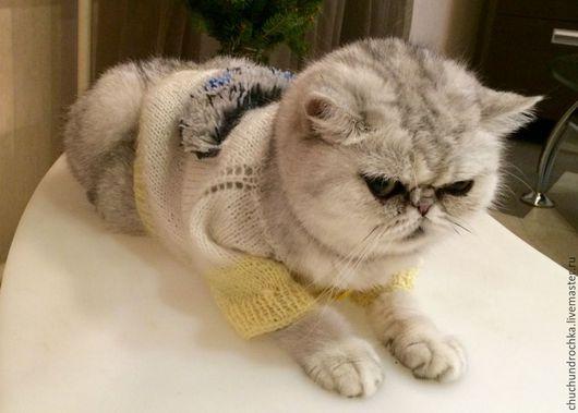 Одежда для кошек, ручной работы. Ярмарка Мастеров - ручная работа. Купить Распашонка Пушишка. Handmade. Белый, Кошки, пушистик