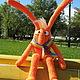 Морковный заяц. Любит свежий воздух. Маргаритка. Ярмарка Мастеров.
