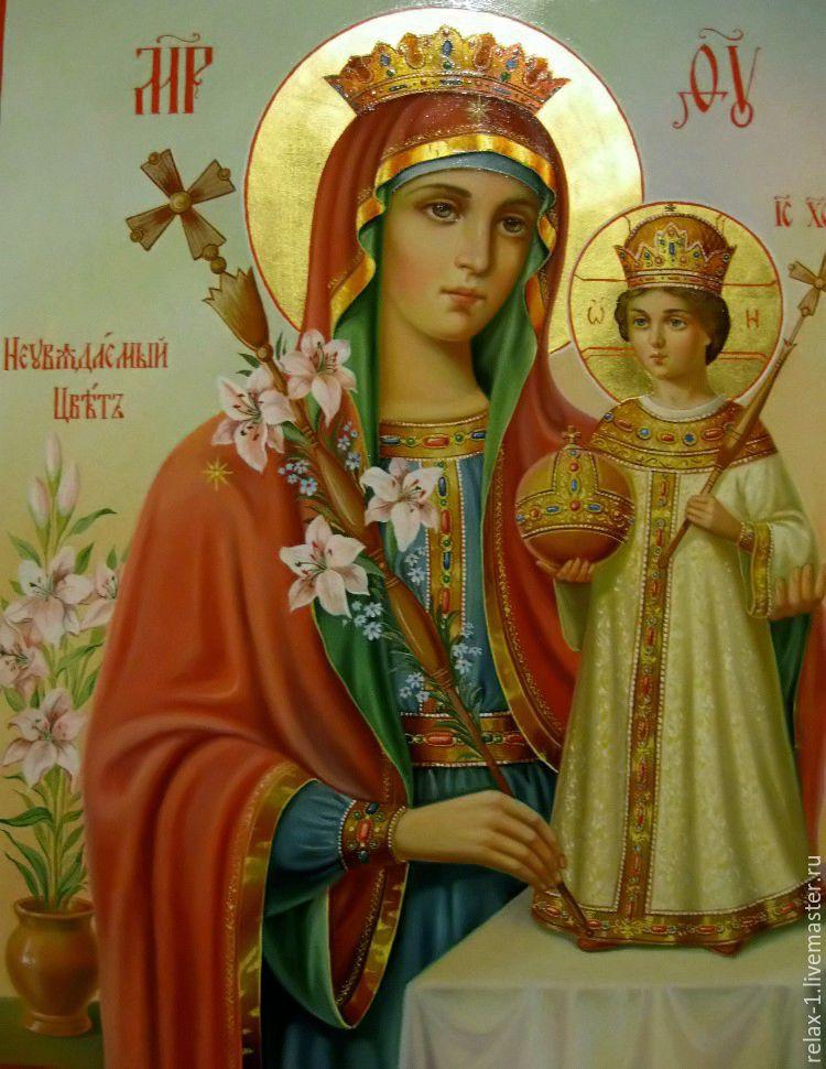 Фото икона божией матери неувядаемый цвет
