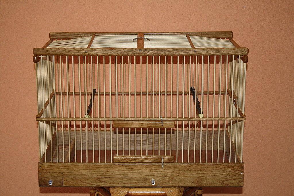 детей картинки для клетки с птицами