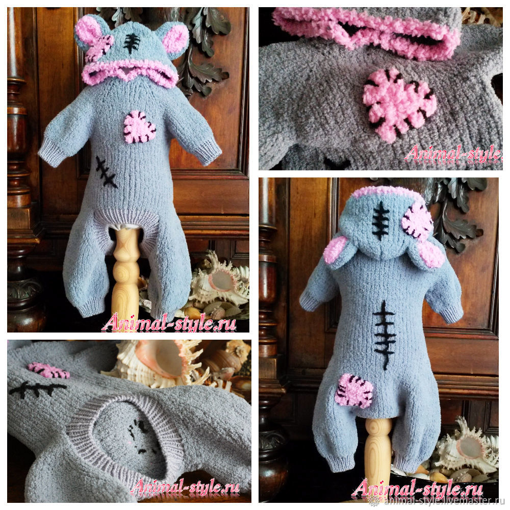 Suit `Teddy Bear` for dogs and cats