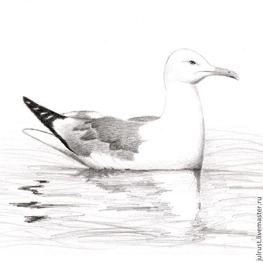 Животные ручной работы. Ярмарка Мастеров - ручная работа. Купить Картина Чайка рисунок карандаш белый серый черный птица графика. Handmade.