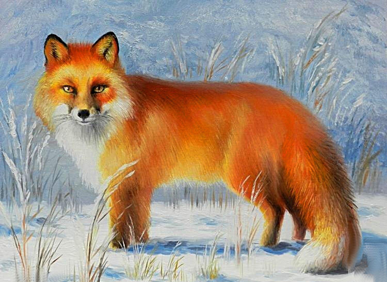 Открытки поздравление, картинки с изображением лисы для детей
