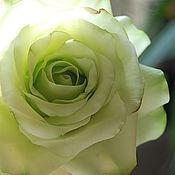 """Цветы ручной работы. Ярмарка Мастеров - ручная работа Роза """" Green Tea """". Handmade."""