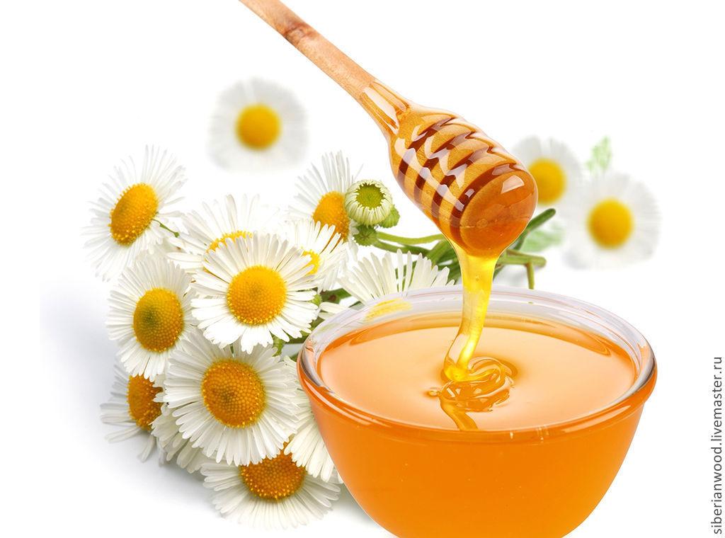 Дризл деревянный Ложечка для мёда из Березы #D1, Утварь, Новокузнецк,  Фото №1