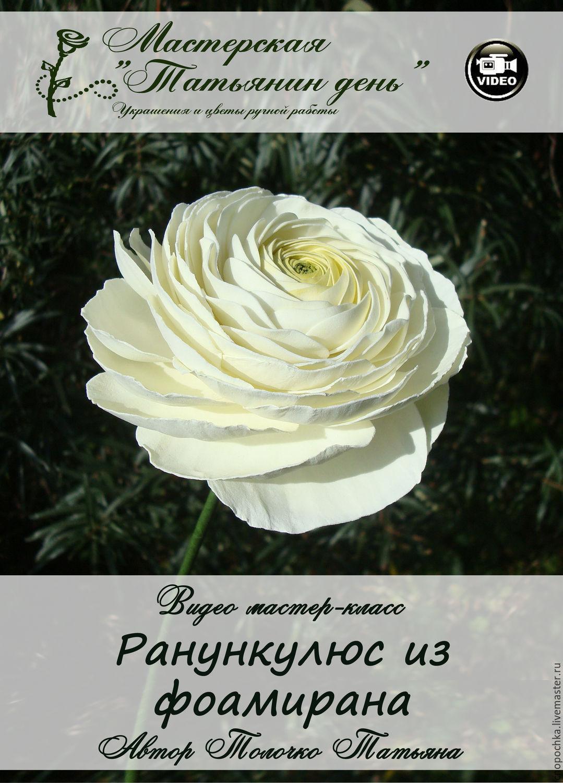 Мастер-класс Ранункулюс из фоамирана, Обучающие материалы, Реутов, Фото №1
