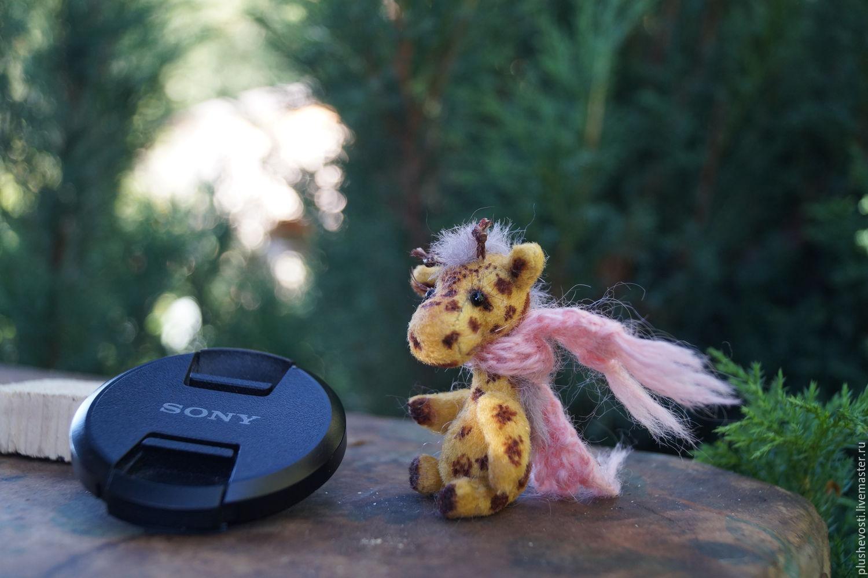 жираф Ми, Мишки Тедди, Новосибирск, Фото №1