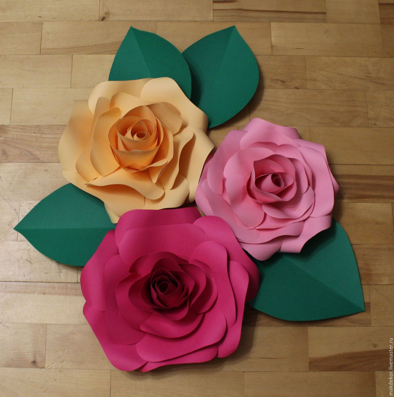 фото пышных цветов и их название