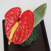 Цветы и флористика handmade. Livemaster - original item Interior arrangement, Anthurium polymer clay.. Handmade.