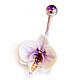 Орхидея-фаленопсис бело-лиловая