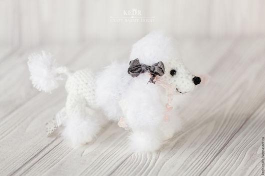 """Игрушки животные, ручной работы. Ярмарка Мастеров - ручная работа. Купить пудель """"Соната"""" собачка белая вязаная мягкая игрушка. Handmade."""
