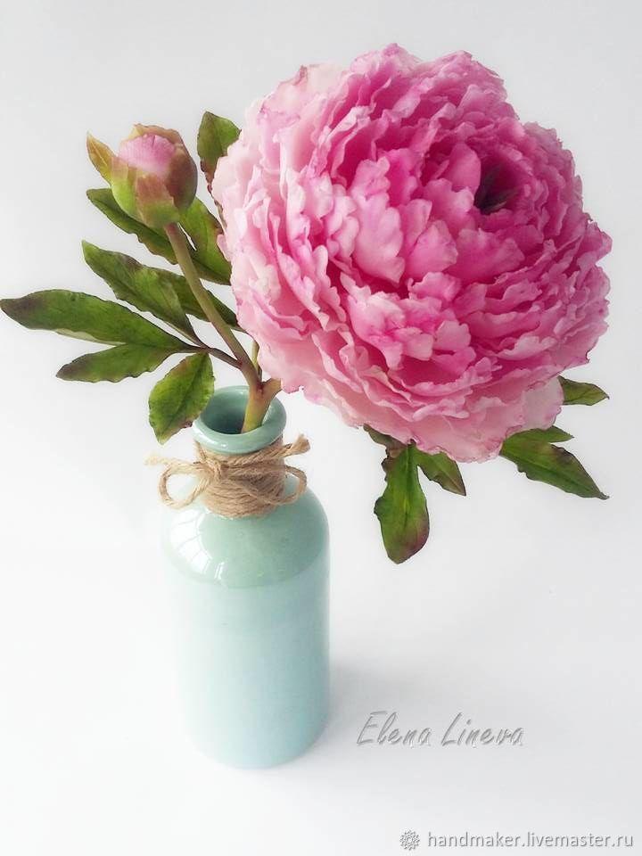 Розовый пион, Цветы, Нижний Тагил,  Фото №1