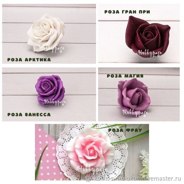 Silicone form rose Arctic, Vanessa, Grand Prix, Magic, Frau, Form, Moscow,  Фото №1