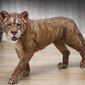 Куклы и игрушки handmade. Livemaster - original item Lioness. Realistic toy.. Handmade.