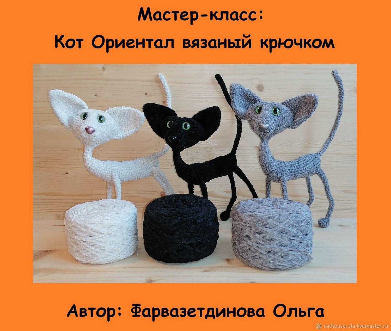 Мастер-класс по вязанию Кота крючком, Мягкие игрушки, Уфа,  Фото №1