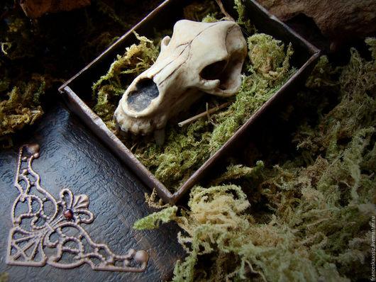 Медвежий череп, брелок из полимерной глины для мужчин