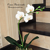 Цветы и флористика ручной работы. Ярмарка Мастеров - ручная работа Орхидея фаленопсис из полимерной глины. Handmade.