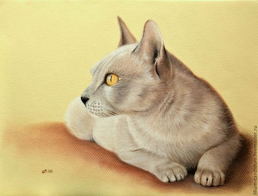 Животные ручной работы. Ярмарка Мастеров - ручная работа. Купить Кошка картина пастелью. Handmade. Кошка, желтый, картина с кошкой