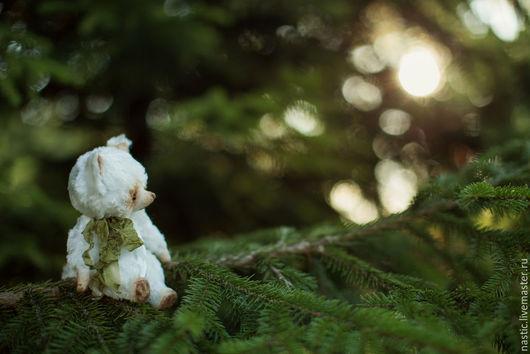 Мишки Тедди ручной работы. Ярмарка Мастеров - ручная работа. Купить сказка о белой лисе. Handmade. Белый, опилки древесные