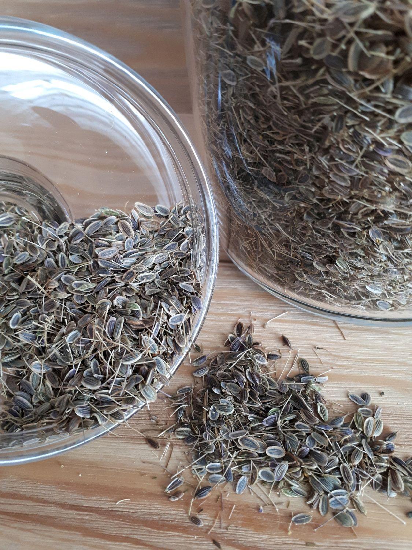 Укропное семя, Эфирные масла, Чарышское,  Фото №1