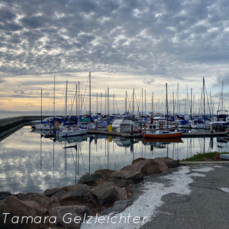 Северная Калифорния. Brisbane Marina, Фото, Сан-Франциско,  Фото №1