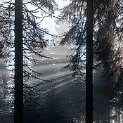 Картины и панно ручной работы. Ярмарка Мастеров - ручная работа Фотокартина авторская Туманность. Handmade.