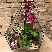 """Цветы и флористика ручной работы. Ярмарка Мастеров - ручная работа Флорариум """"Орхидея в конусе"""". Handmade."""