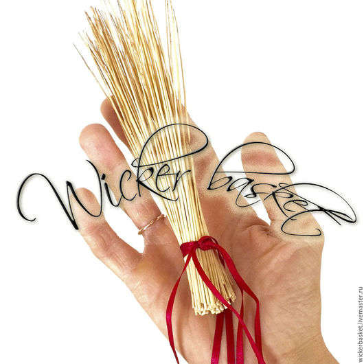 Другие виды рукоделия ручной работы. Ярмарка Мастеров - ручная работа. Купить Прут ивовый (лоза) для плетения 20-40 см., в пучках по 100 шт.. Handmade.