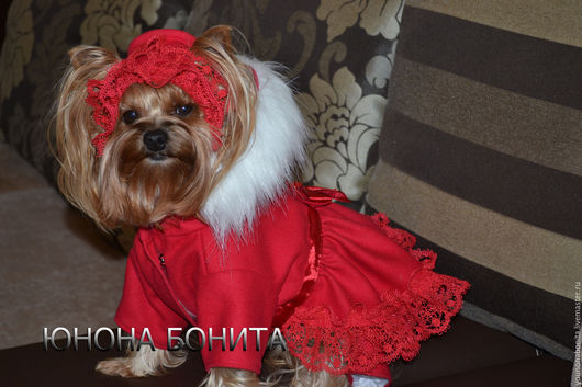 """Одежда для собак, ручной работы. Ярмарка Мастеров - ручная работа. Купить Комбинезон-пальто """"Ягода Красная"""". Handmade. Одежда для собак"""