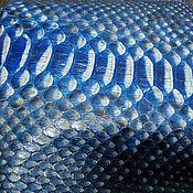 Материалы для творчества handmade. Livemaster - original item Python skin, in dark blue color, multi color, clothing dressing.. Handmade.