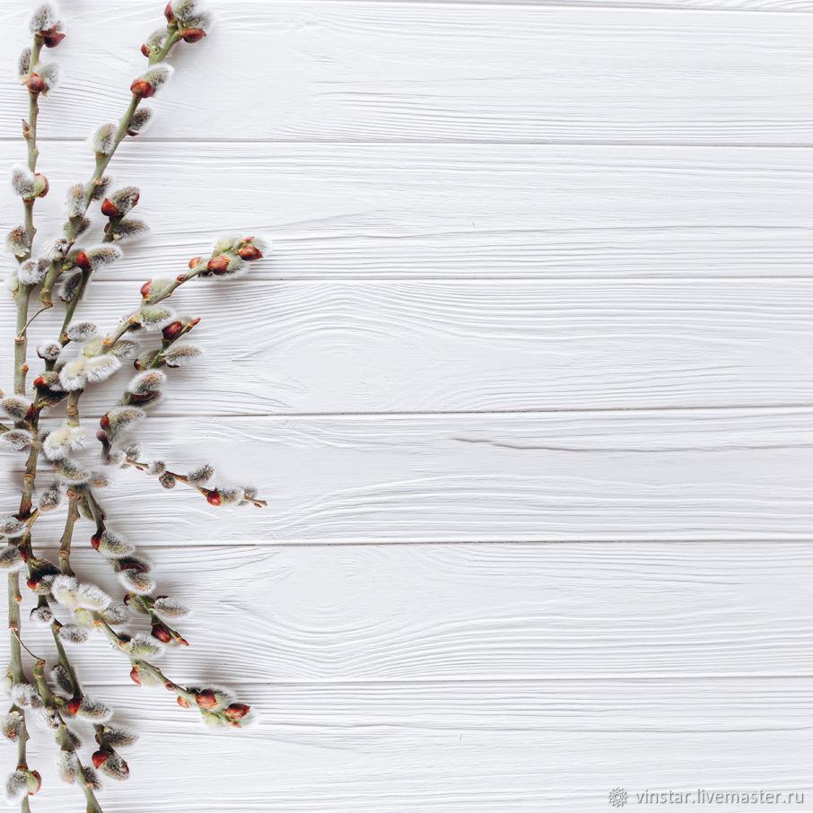 Фотофон виниловый Ветки вербы, Фото, Курск,  Фото №1