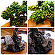 Collectible Souvenir 'Old Pine' in the form of a Bonsai tree!. Model. ROCK The Magic of Natural Stone (skalabvs). Online shopping on My Livemaster.  Фото №2
