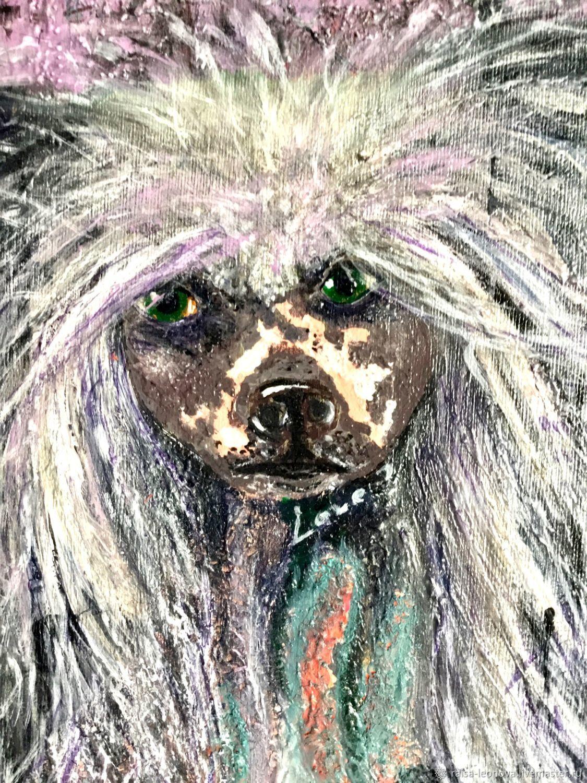 китайская хохлатая собачка, Картины, Сопот,  Фото №1