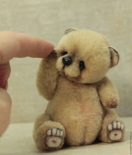 Первый медвежонок