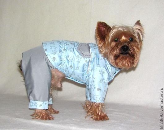 """Одежда для собак, ручной работы. Ярмарка Мастеров - ручная работа. Купить Комбинезон """"Пес Барбос"""". Handmade. Комплект, одежда для собак"""