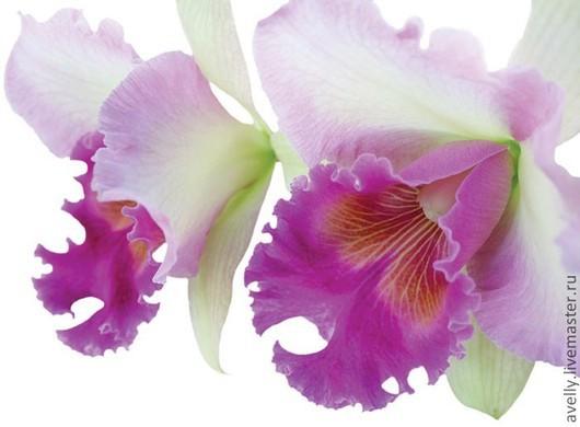 Материалы для флористики ручной работы. Ярмарка Мастеров - ручная работа. Купить Набор для орхидеи Каттлея, размер L, Н-16. Handmade.