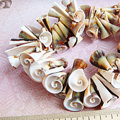 Материалы для творчества handmade. Livemaster - original item Beads shell Liswa. Handmade.