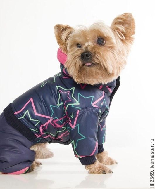 Одежда для собак, ручной работы. Ярмарка Мастеров - ручная работа. Купить Одежда для собак Комбинезон Звездное небо. Handmade.