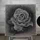 """Картины цветов ручной работы. Ярмарка Мастеров - ручная работа. Купить картина """"Роза"""" в стиле стринг арт. Handmade. роза"""