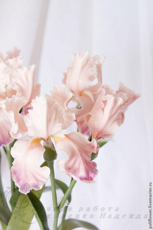 """Цветы ручной работы. Ярмарка Мастеров - ручная работа. Купить Ирисы """"Alba al lago"""". Флористическая глина.. Handmade. Розовый"""