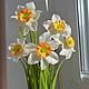 Цветы ручной работы. Ярмарка Мастеров - ручная работа. Купить Нарциссы из полимерной глины (холодного фарфора). Handmade. Белый, нарцисс