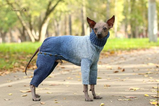 Одежда для собак, ручной работы. Ярмарка Мастеров - ручная работа. Купить Комбинезон для собаки. Handmade. Деним, свитер для собаки, шерсть